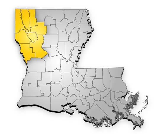 buying mineral rights in Louisiana